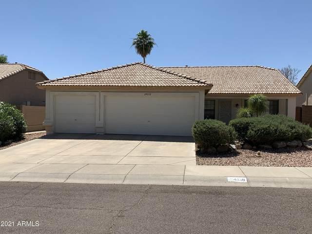 24218 N 38TH Drive, Glendale, AZ 85310 (MLS #6242560) :: Yost Realty Group at RE/MAX Casa Grande
