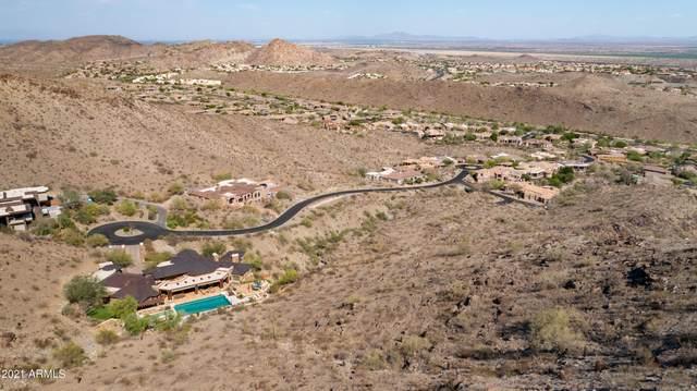 14406 S Presario Trail, Phoenix, AZ 85048 (MLS #6242588) :: Dave Fernandez Team | HomeSmart