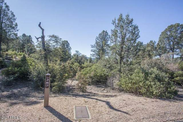 204 S Crescent Moon, Payson, AZ 85541 (MLS #6242601) :: Service First Realty
