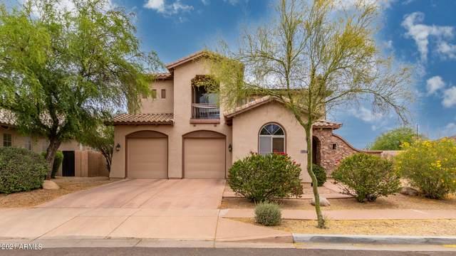2906 W Donatello Drive, Phoenix, AZ 85086 (MLS #6242648) :: Klaus Team Real Estate Solutions