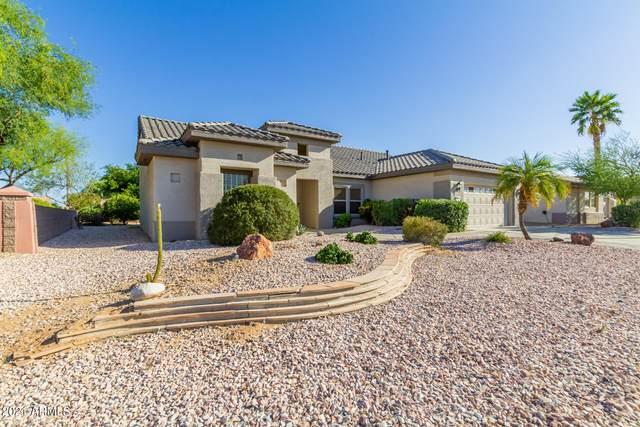 15731 W Mill Valley Lane, Surprise, AZ 85374 (MLS #6242717) :: Elite Home Advisors