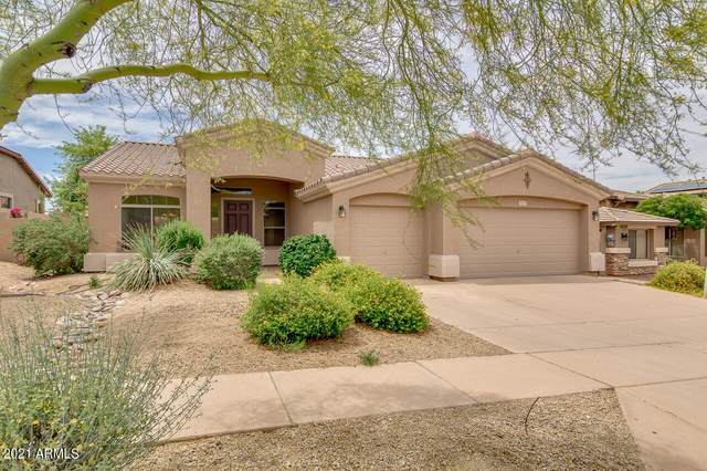 2617 W Perdido Way, Phoenix, AZ 85086 (MLS #6242752) :: Klaus Team Real Estate Solutions