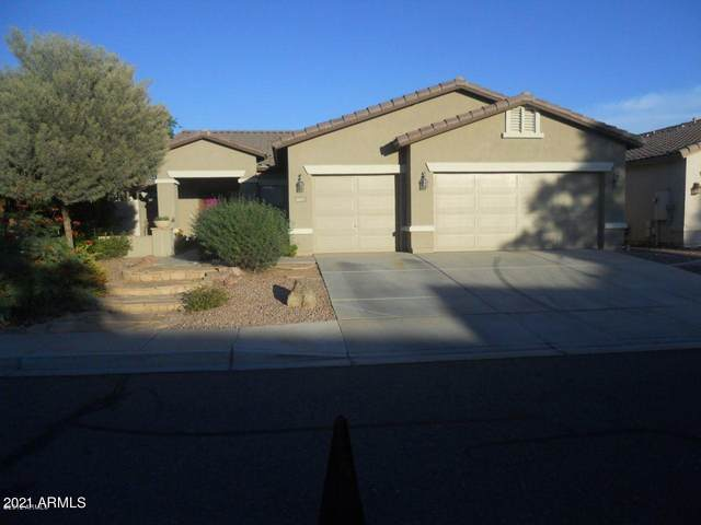 3625 N 127TH Drive, Avondale, AZ 85392 (MLS #6242762) :: Yost Realty Group at RE/MAX Casa Grande