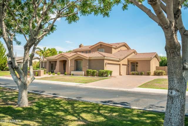 3541 E Minton Street, Mesa, AZ 85213 (MLS #6242785) :: Yost Realty Group at RE/MAX Casa Grande