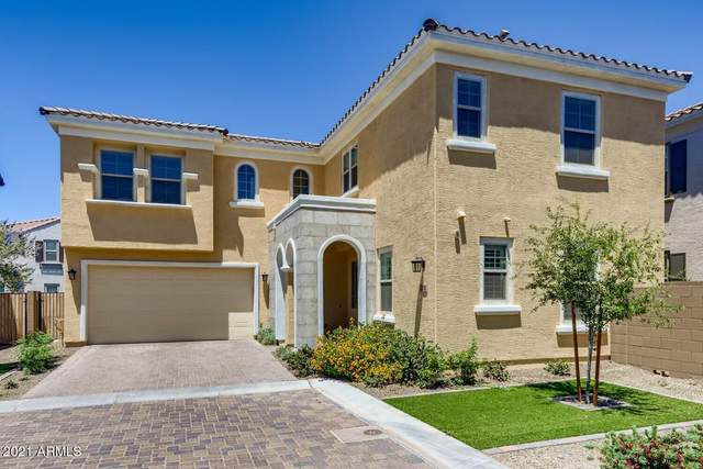 17241 N 9TH Place, Phoenix, AZ 85022 (MLS #6242802) :: Power Realty Group Model Home Center