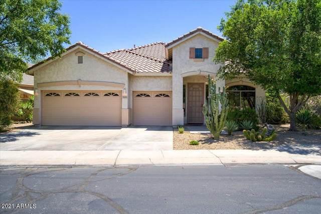 7035 S 27TH Way, Phoenix, AZ 85042 (MLS #6242867) :: Yost Realty Group at RE/MAX Casa Grande
