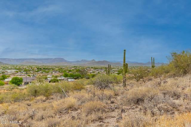 29X3 W Joy Ranch Road, Phoenix, AZ 85086 (MLS #6242964) :: Conway Real Estate