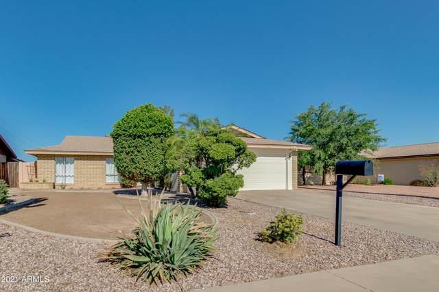18437 N 31st Avenue, Phoenix, AZ 85053 (MLS #6242993) :: Yost Realty Group at RE/MAX Casa Grande
