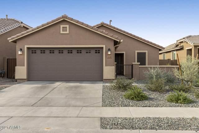 2228 W Donner Drive, Phoenix, AZ 85041 (MLS #6242996) :: Klaus Team Real Estate Solutions