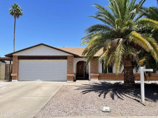 2316 W Temple Street, Chandler, AZ 85224 (MLS #6243019) :: Midland Real Estate Alliance