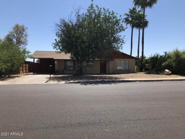 6337 S College Avenue, Tempe, AZ 85283 (MLS #6243021) :: Yost Realty Group at RE/MAX Casa Grande