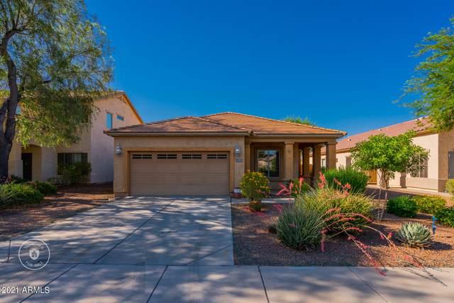 26122 W Tonopah Drive, Buckeye, AZ 85396 (MLS #6243092) :: Executive Realty Advisors