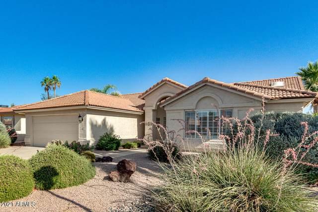 10413 E Watford Way, Sun Lakes, AZ 85248 (MLS #6243138) :: Conway Real Estate