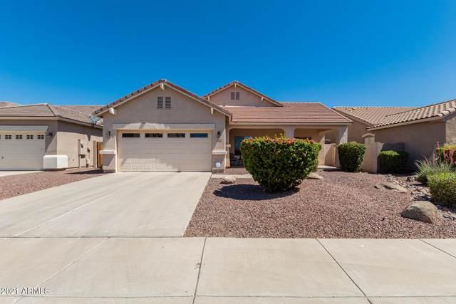 6918 W Sophie Lane, Laveen, AZ 85339 (MLS #6243203) :: Yost Realty Group at RE/MAX Casa Grande