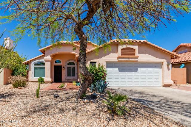 10859 S Dreamy Drive, Goodyear, AZ 85338 (MLS #6243272) :: The Property Partners at eXp Realty