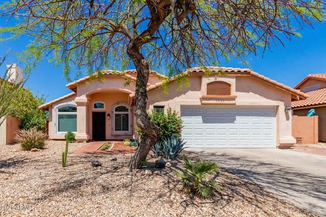 10859 S Dreamy Drive, Goodyear, AZ 85338 (MLS #6243272) :: Executive Realty Advisors