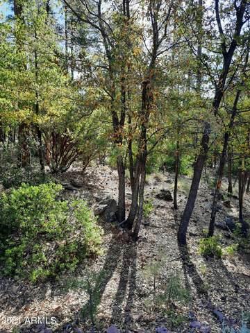 90 Mystical Circle, Pine, AZ 85544 (MLS #6243313) :: The Dobbins Team
