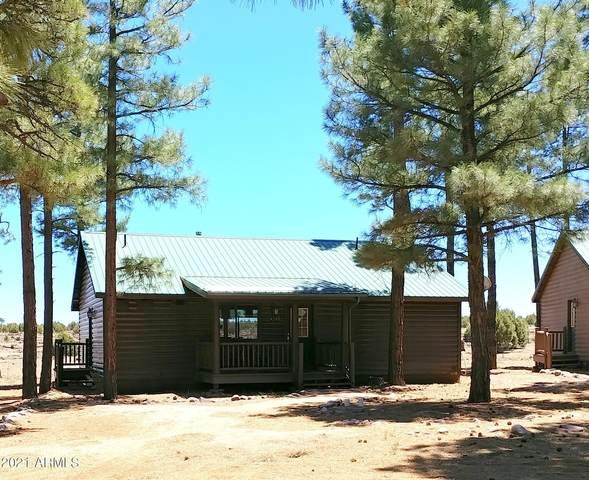2725 High Pine Loop, Overgaard, AZ 85933 (MLS #6243329) :: Yost Realty Group at RE/MAX Casa Grande