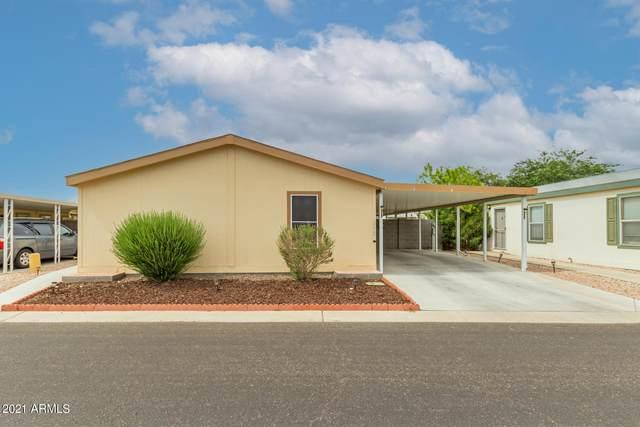 8601 N 103RD Avenue #272, Peoria, AZ 85345 (MLS #6243353) :: Midland Real Estate Alliance