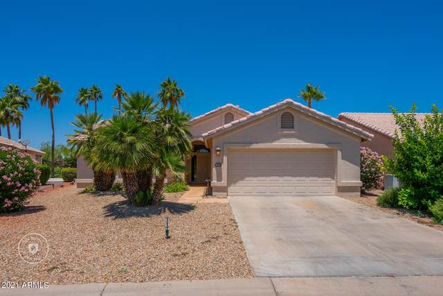 15440 W Merrell Street, Goodyear, AZ 85395 (MLS #6243379) :: Yost Realty Group at RE/MAX Casa Grande