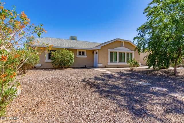 1359 E 28TH Avenue, Apache Junction, AZ 85119 (MLS #6243383) :: Yost Realty Group at RE/MAX Casa Grande