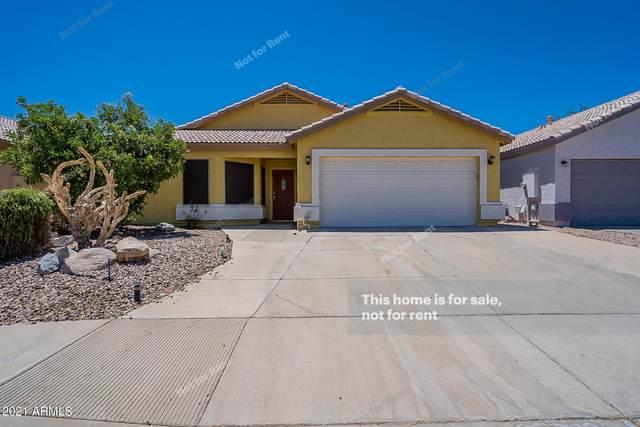 1805 E Juniper Avenue, Phoenix, AZ 85022 (MLS #6243402) :: Yost Realty Group at RE/MAX Casa Grande