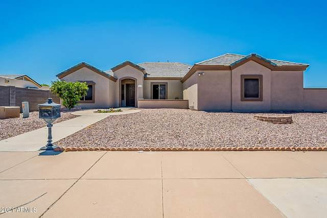 12014 N 28TH Street, Phoenix, AZ 85028 (MLS #6243474) :: Yost Realty Group at RE/MAX Casa Grande