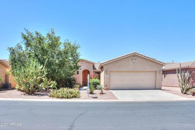 42942 W Whimsical Drive, Maricopa, AZ 85138 (MLS #6243479) :: Yost Realty Group at RE/MAX Casa Grande