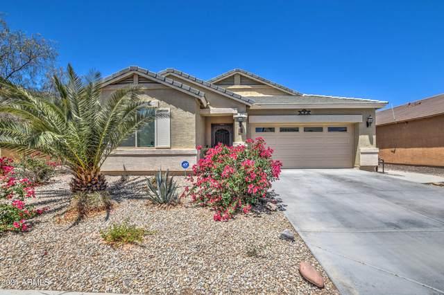 17638 N Avelino Drive, Maricopa, AZ 85138 (MLS #6243523) :: Yost Realty Group at RE/MAX Casa Grande