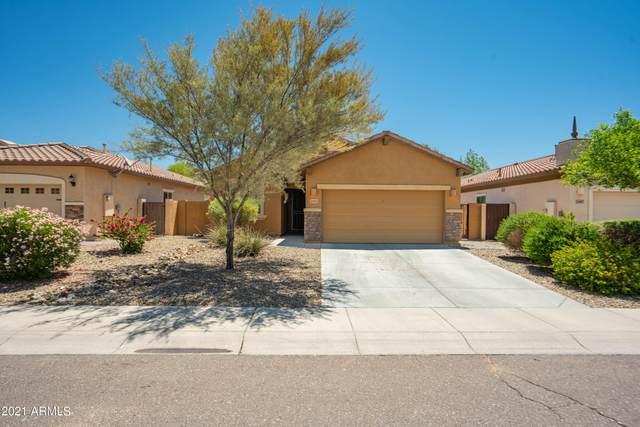 26911 N 55TH Drive, Phoenix, AZ 85083 (MLS #6243524) :: Maison DeBlanc Real Estate