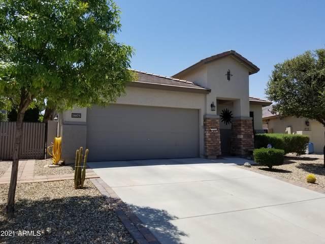 18075 W Carol Avenue, Waddell, AZ 85355 (MLS #6243554) :: Executive Realty Advisors