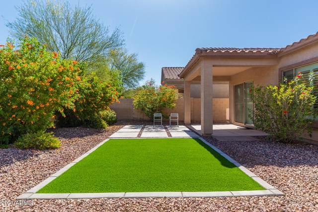 3310 W Galvin Street, Phoenix, AZ 85086 (MLS #6243686) :: Klaus Team Real Estate Solutions