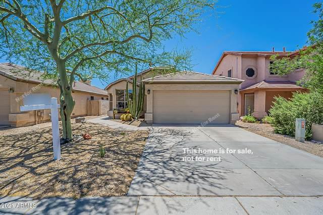 4709 E Abraham Lane, Phoenix, AZ 85050 (MLS #6243688) :: Yost Realty Group at RE/MAX Casa Grande