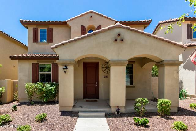 2446 N Eastview Way, Buckeye, AZ 85396 (MLS #6243711) :: Yost Realty Group at RE/MAX Casa Grande