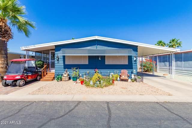 10960 N 67TH Avenue #36, Peoria, AZ 85345 (MLS #6243750) :: Selling AZ Homes Team
