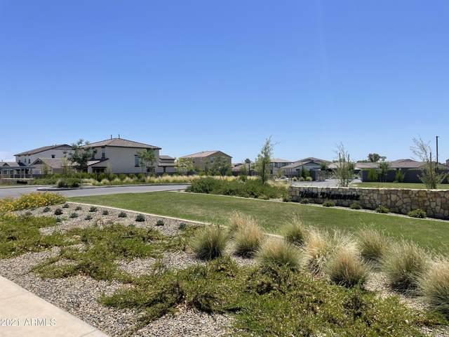 5735 N 107th Lane, Glendale, AZ 85307 (MLS #6243795) :: Midland Real Estate Alliance