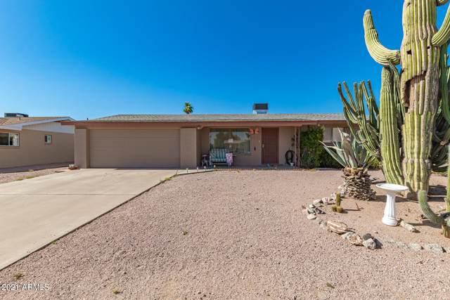 6538 E Adobe Road, Mesa, AZ 85205 (MLS #6243822) :: Klaus Team Real Estate Solutions