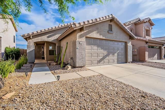 4151 E Anderson Drive, Phoenix, AZ 85032 (MLS #6243834) :: Yost Realty Group at RE/MAX Casa Grande