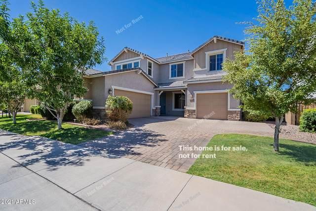 7124 E Portobello Avenue, Mesa, AZ 85212 (MLS #6243901) :: Yost Realty Group at RE/MAX Casa Grande