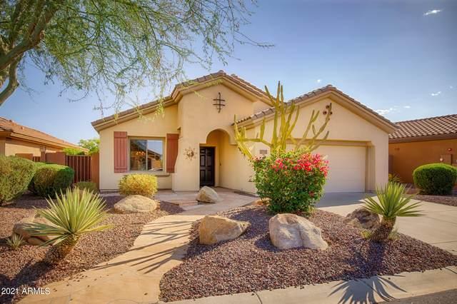 1750 W Dion Drive, Phoenix, AZ 85086 (MLS #6243945) :: Klaus Team Real Estate Solutions