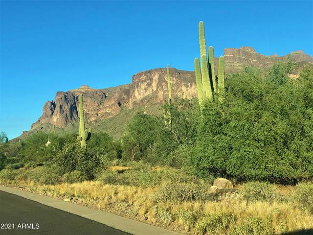 689 N Sun Road, Apache Junction, AZ 85119 (MLS #6243998) :: Howe Realty