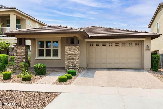 10625 E Sebring Avenue, Mesa, AZ 85212 (MLS #6244114) :: Power Realty Group Model Home Center