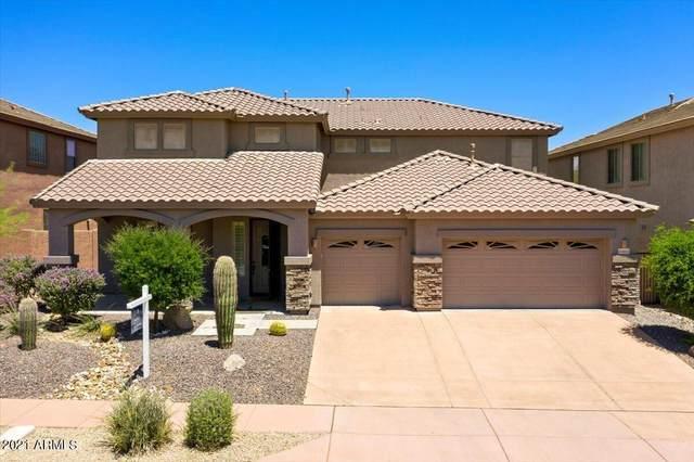 35915 N 32ND Drive, Phoenix, AZ 85086 (MLS #6244131) :: Klaus Team Real Estate Solutions