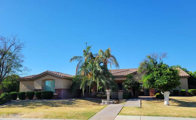 3533 E Knoll Street, Mesa, AZ 85213 (MLS #6244209) :: Yost Realty Group at RE/MAX Casa Grande