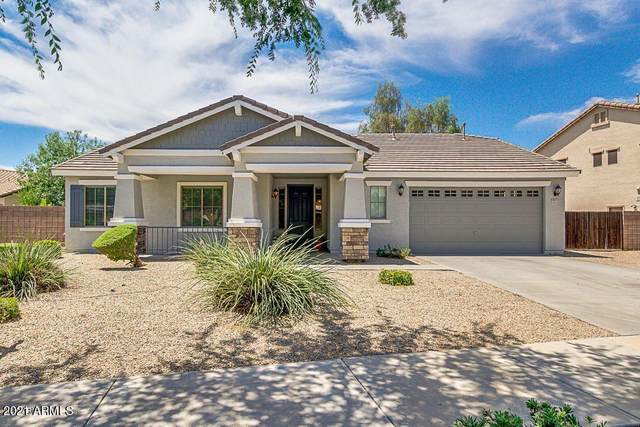 18851 E Cardinal Way, Queen Creek, AZ 85142 (MLS #6244276) :: Yost Realty Group at RE/MAX Casa Grande