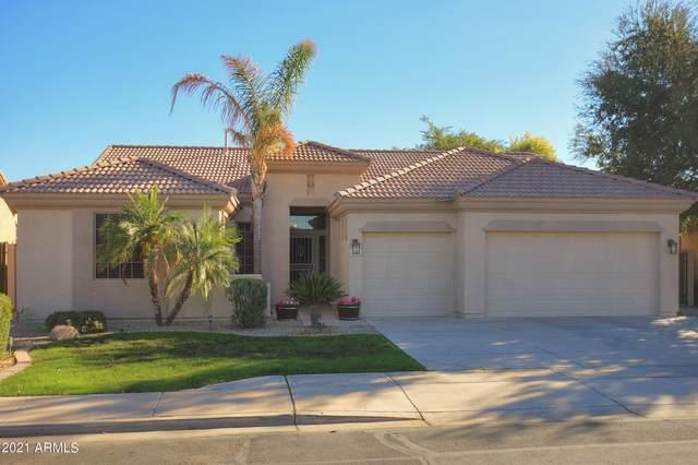 3121 S Esmeralda Circle, Mesa, AZ 85212 (MLS #6244311) :: Yost Realty Group at RE/MAX Casa Grande