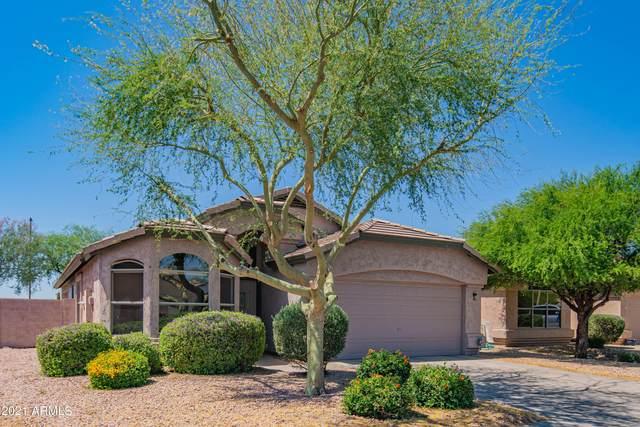 4519 E Lone Cactus Drive, Phoenix, AZ 85050 (MLS #6244424) :: Yost Realty Group at RE/MAX Casa Grande