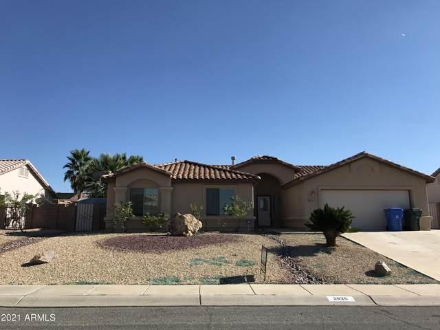 2826 Newport Avenue, Sierra Vista, AZ 85635 (MLS #6244435) :: Executive Realty Advisors