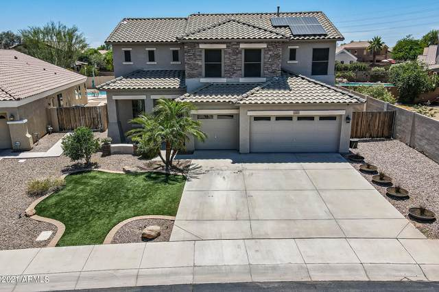 3853 S Wayne Drive, Chandler, AZ 85286 (MLS #6244446) :: Yost Realty Group at RE/MAX Casa Grande