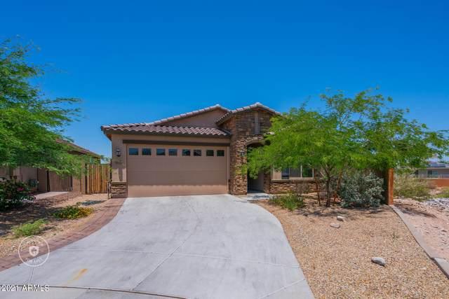 10757 S 174TH Avenue, Goodyear, AZ 85338 (MLS #6244500) :: Midland Real Estate Alliance